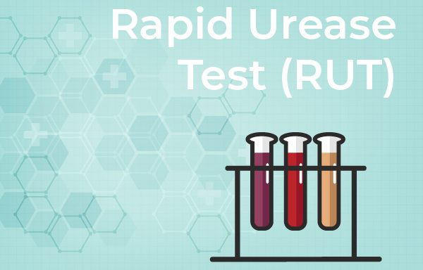 Rapid Urease Test